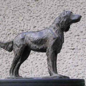 Duitse Staande hond langhaar, brons Yvonne Piller