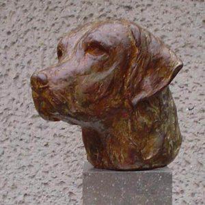Labrador brons Yvonne Piller