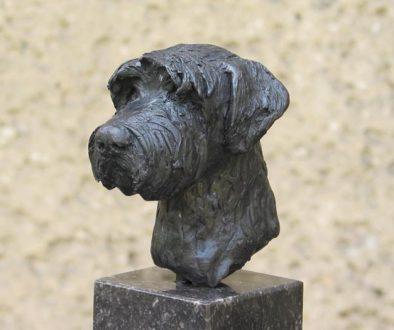 Schnautzer, brons Yvonne Piller